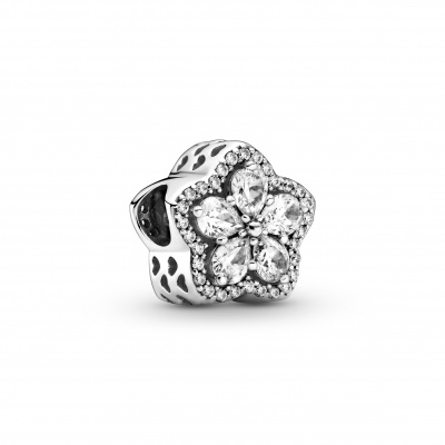 Pandora 925 Sterling Zilveren Snowflake Bedel Met Zirkonia 799224C01
